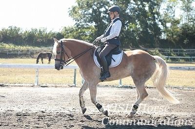 馬が愛情で応える乗馬