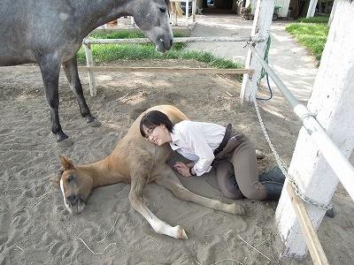 子馬とお昼寝