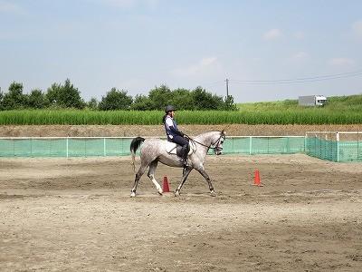 馬と人、ふたつの心