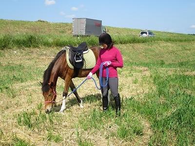 新馬調教 馬にお手本を見せる