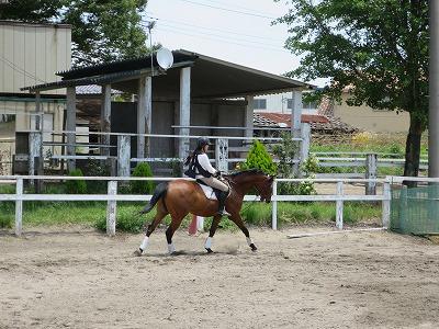 馬と自由自在