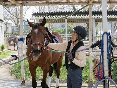 馬との話し方