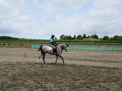 乗馬の楽しみ!