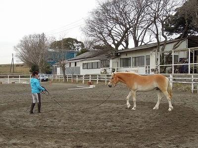 馬と最高の一日!