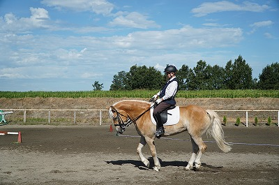 ヨーロッパ流乗馬スタイル