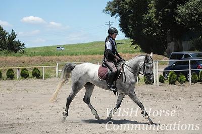 信頼を大切にする乗馬
