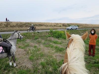 愛馬と外乗