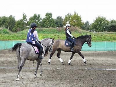馬と仲良くきれいな騎乗