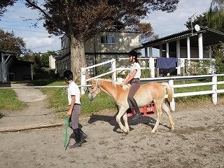 乗馬は感動健康成長