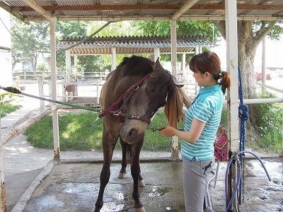 馬と気持ちをあわせて