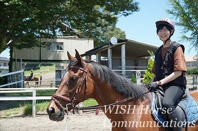 経験者向け乗馬体験