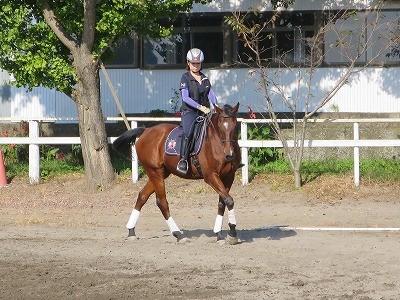 馬の内方姿勢