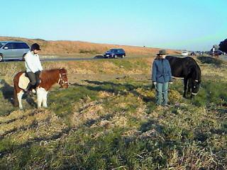 馬とお散歩風景