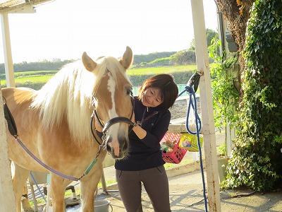 馬に癒される
