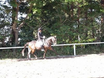 馬術競技に向けて準備運動