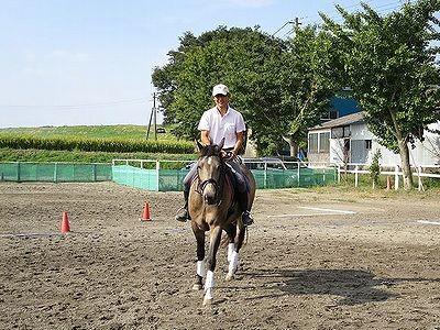 馬と楽しい時間を
