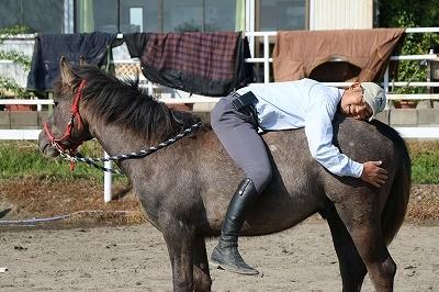 馬が好き好き