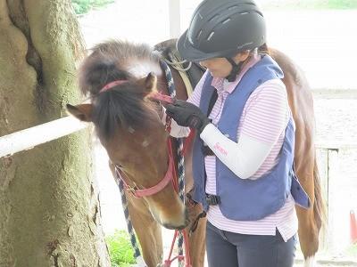 新馬調教 馬に愛されていると教える