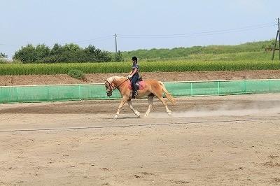 夏の乗馬 爽やか笑顔