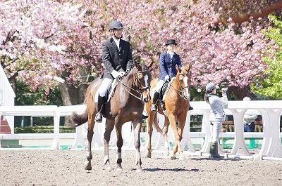 馬術競技会の時の写真