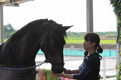 馬との優しい心のふれあい