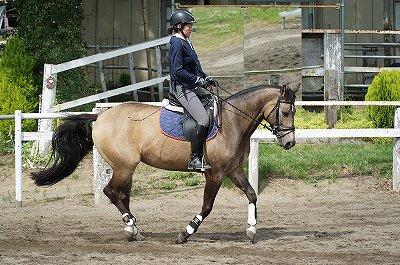 馬と一体になるということは自分を消すということ