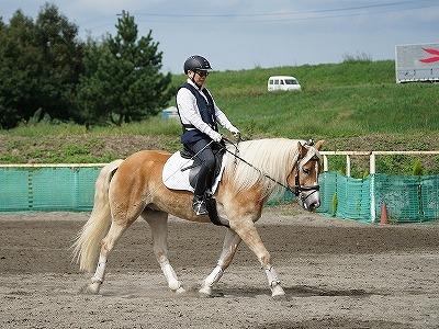 馬を消費する乗馬?馬を育てる乗馬?