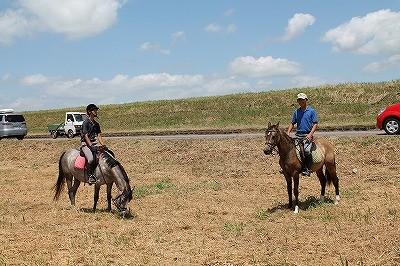 馬にいろいろなことを体験させる