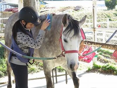 馬と素敵な絆を結ぶ