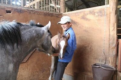 馬のインプリンティングトレーニング
