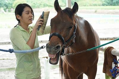 馬の心をしっかりとらえましょう!