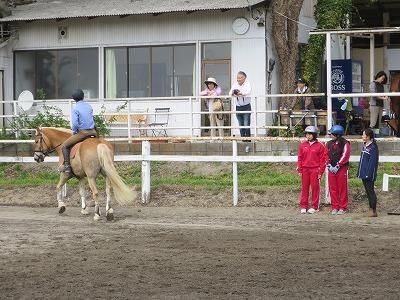 体験乗馬会