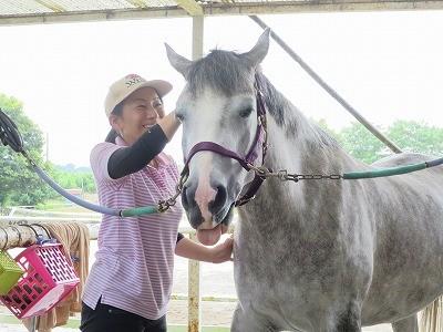 馬を安心させる