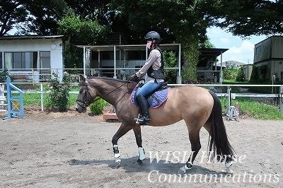 馬と寄り添って生きる