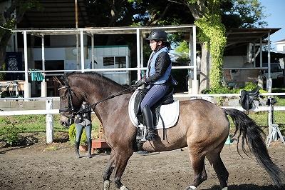 馬と寄り添う乗馬を