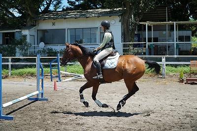 馬と会話しながら乗る