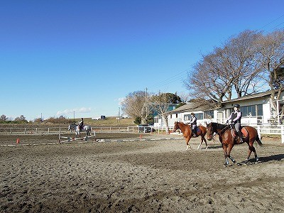 冬晴れ乗馬