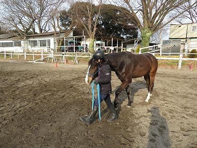 馬がシンパシーを感じてくれる乗馬をすること