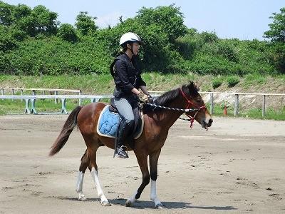 新馬調教 受け入れているモグペロ