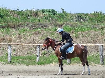 新馬調教 馬の心に訴えかける