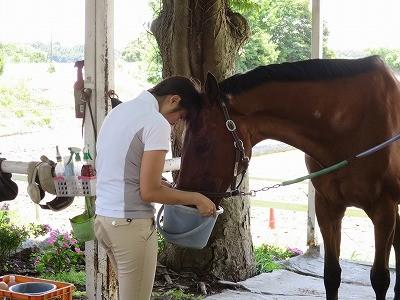 馬に喜びを