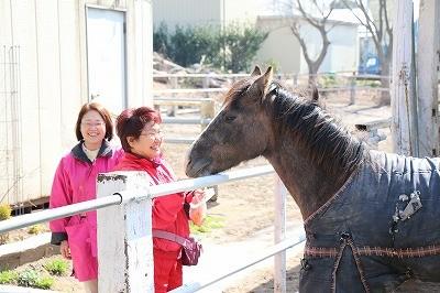笑顔と馬のうっとり顔