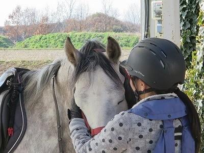 愛する気持ち、馬の喜ぶ顔