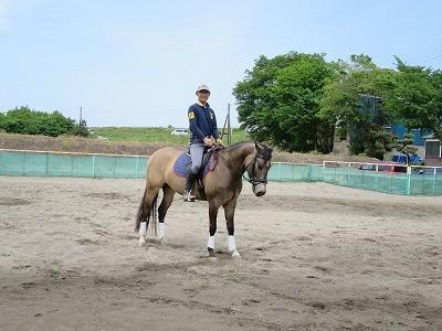 ゴールデンウィークに乗馬