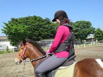 新馬調教 安心を提供する