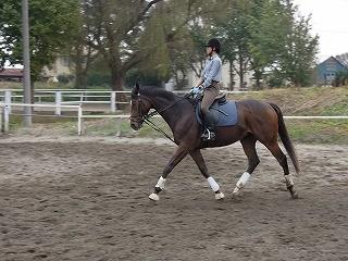 馬も人も健康管理が大切ですね