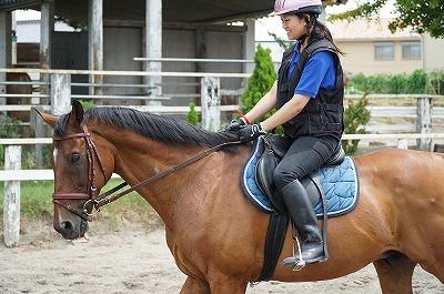 よく調教された馬は最良の教師