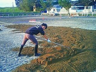 乗馬クラブの馬場に砂を入れました!