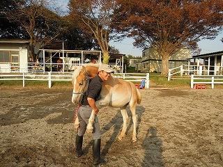 馬と踊ろう♪