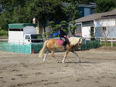 良い馬と楽しい乗馬